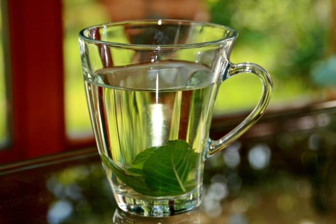 peppermint-tea-352334_1920