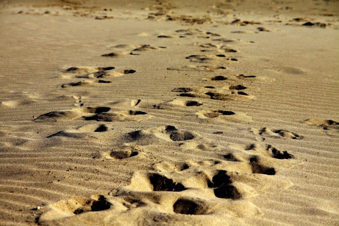 footprints-1075132_1920
