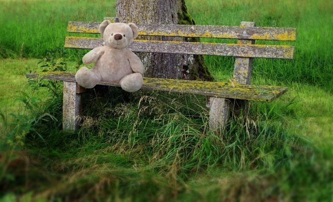 teddy-1141942_1920.jpg