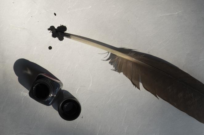 bird-feather-2505308_1920