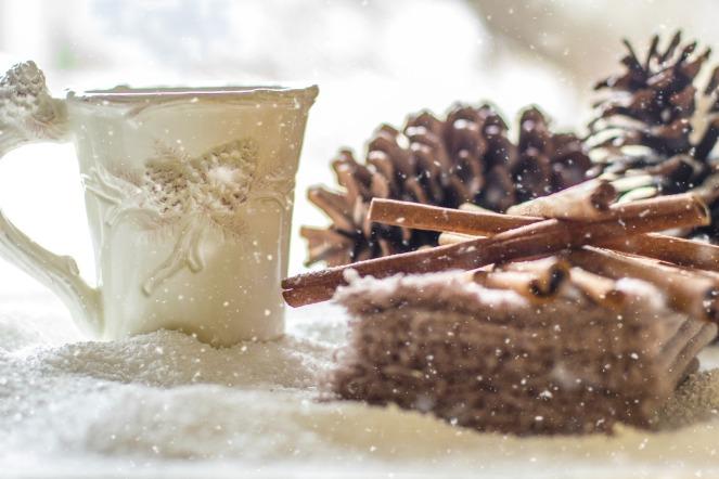 pine-cones-2110283_1920