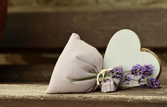 lavender-823600_1920