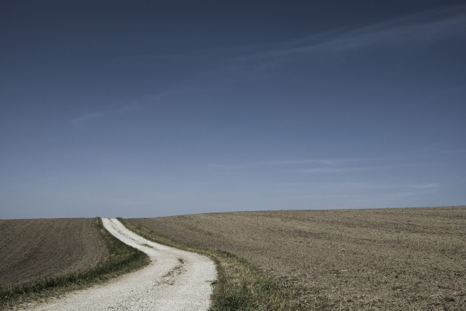 field-path-388913_1920